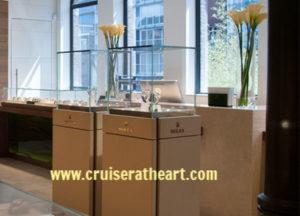 Amsterdam Cruise Excursion
